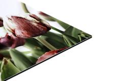 Professionelle Aluminium Drucke von Fotos oder PDF